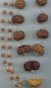 Rudraksha,Nepal Rudraksha,1 Mukhi to 21 Rudraksha Beads
